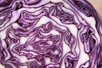 Fruits et légumes, maladie d'Alzheimer et troubles cognitifs - Biblio