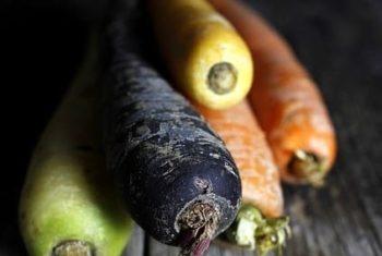 Régimes végétariens et végan – Biblio