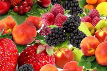 Régimes végétariens et végan : couverture nutritionnelle