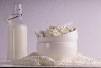 Graisses saturées, les produits laitiers - Biblio