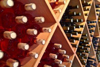 Les boissons alcoolisées : effet des doses modérées – Biblio