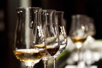 Boissons alcoolisées : consommation et excès – Biblio