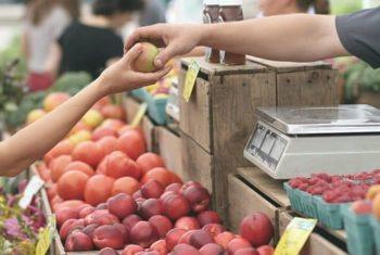 Réduire les coûts de santé avec les aliments : possible, en pratique ?