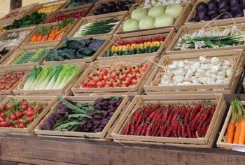 Fruits et légumes contre cancers des voies aero-digestives supérieures - Biblio
