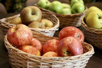 Pommes et santé cardiovasculaire - Biblio